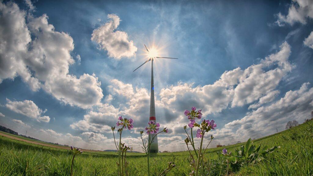 Windrad mit Blumen im Vordergrund, mit Sonne hinter dem Windrad im Gegenlicht fotografiert.